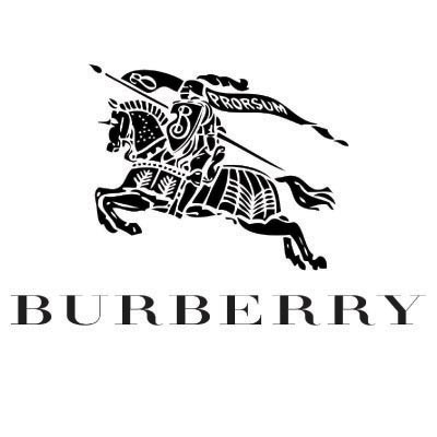 Custom burberry logo iron on transfers (Decal Sticker) No.100012