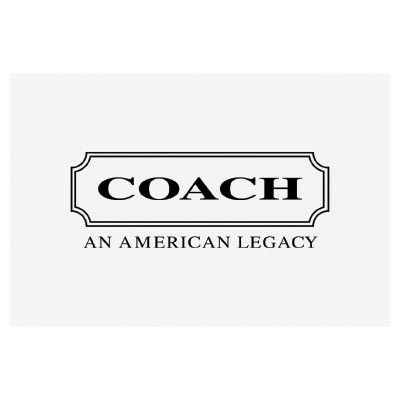 Custom coach logo iron on transfers (Decal Sticker) No.100028