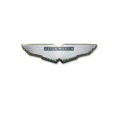 Custom aston martin logo iron on transfers (Decal Sticker) No.100125