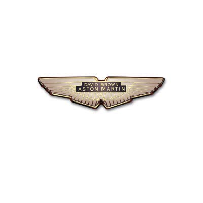 Custom aston martin logo iron on transfers (Decal Sticker) No.100126
