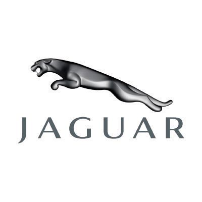 Custom jaguar logo iron on transfers (Decal Sticker) No.100188