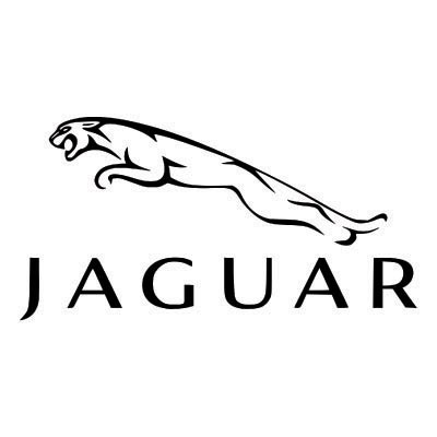 Custom jaguar logo iron on transfers (Decal Sticker) No.100189