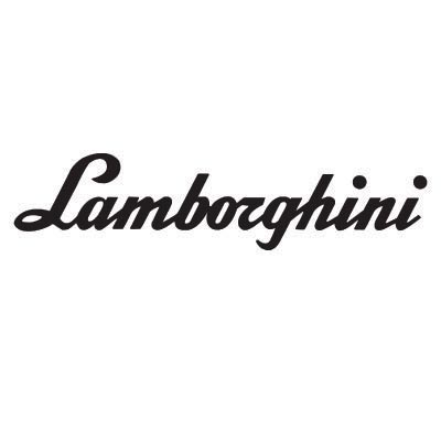 Custom lamborghini logo iron on transfers (Decal Sticker) No.100204