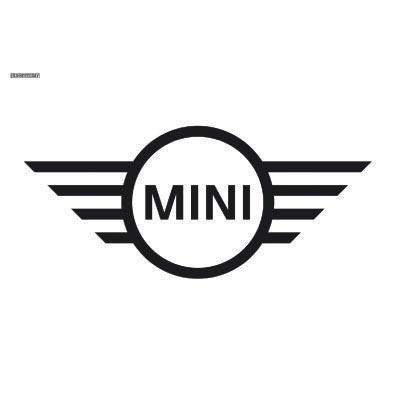 Custom mini logo iron on transfers decal sticker no 100244