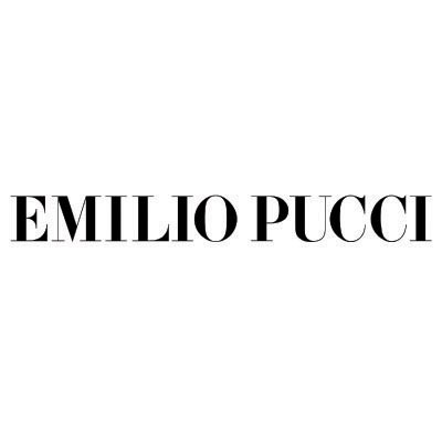 Custom pucci logo iron on transfers (Decal Sticker) No.100395