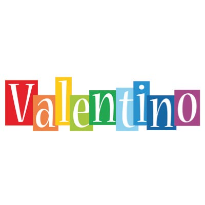 Custom valentino logo iron on transfers (Decal Sticker) No.100405