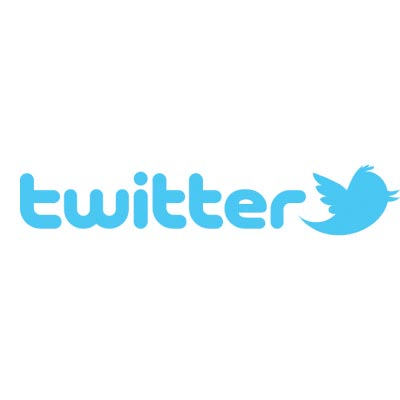 Custom twitter logo iron on transfers (Decal Sticker) No.100522