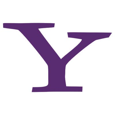 Custom yahoo logo iron on transfers (Decal Sticker) No.100531