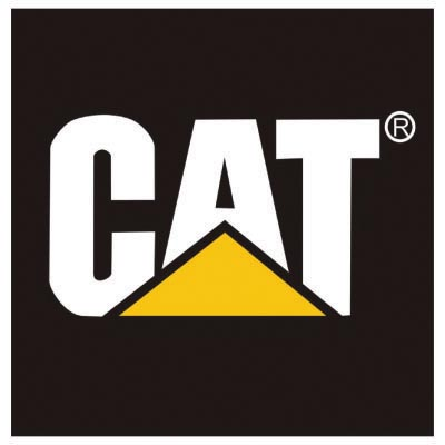Custom cat logo iron on transfers (Decal Sticker) No.100550