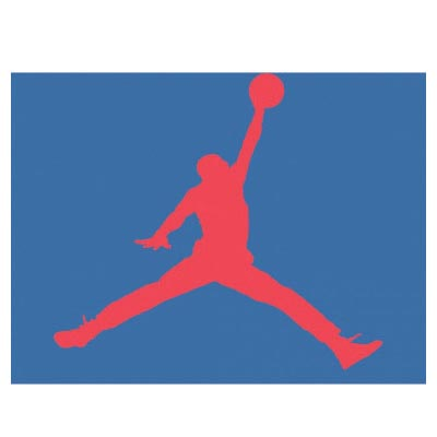 Custom jordan logo iron on transfers (Decal Sticker) No.100578