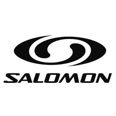 Custom salomon logo iron on transfers (Decal Sticker) No.100629