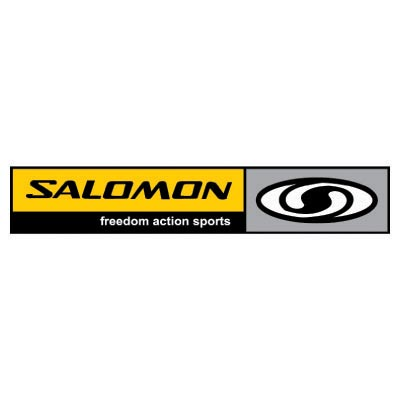 Custom salomon logo iron on transfers (Decal Sticker) No.100630
