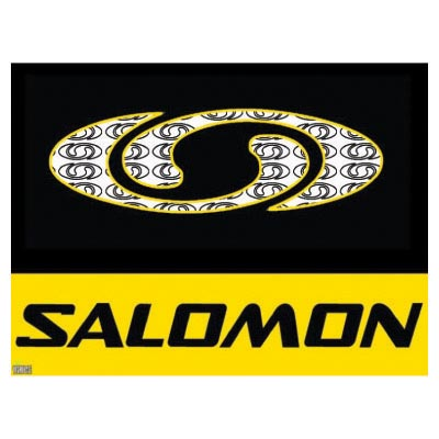 Custom salomon logo iron on transfers (Decal Sticker) No.100632