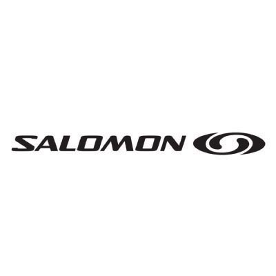 Custom salomon logo iron on transfers (Decal Sticker) No.100633